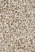 Karastan Dover Coast - Shadow Pearl Carpet