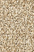 Karastan Dover Coast - Ancient Oak Carpet