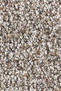 Karastan Bentwood Park - Pewter Carpet