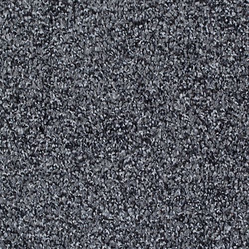 Mohawk Industries Peaceful Quality Fortress Carpet