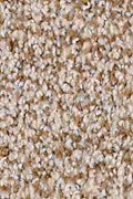 Karastan Serene Scene - Pristine Carpet