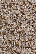 Karastan Serene Scene - Bliss Carpet