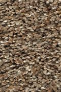 Karastan Rustic Appeal - Cape Sands Carpet