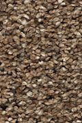 Karastan Rustic Appeal - Toasted Seed Carpet