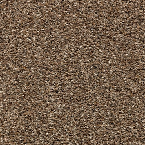 Mohawk Industries Instinctive Flair Quiet Light Carpet
