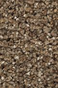 Karastan Rustic Appeal - Mink Stole Carpet