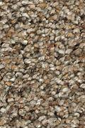 Karastan Rustic Appeal - Ironstone Carpet