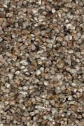 Karastan Rustic Appeal - Mystic Granite Carpet