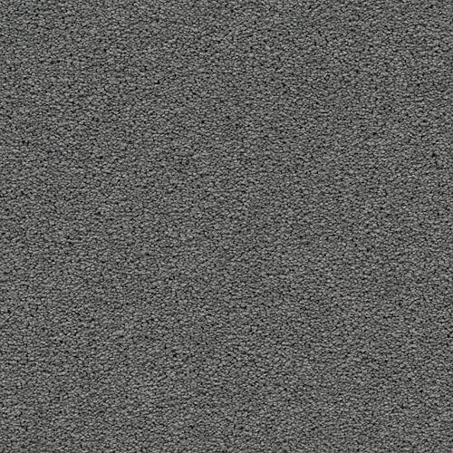 Dynamic Display Wisteria 9555