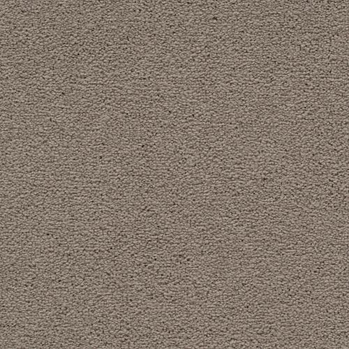 Dynamic Display Dried Peat 9745