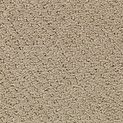 Chateau Hampton Accessible Beige 9746