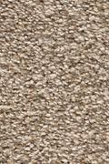 Karastan Highland Scene - Pristine Carpet