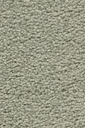 Karastan Craftsman Charm - Sage Brush Carpet