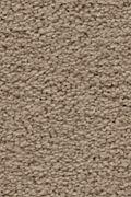 Karastan Craftsman Charm - Gilded Carpet