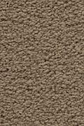 Karastan Craftsman Charm - Inner Balance Carpet