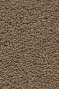 Karastan Craftsman Charm - Coachman Carpet