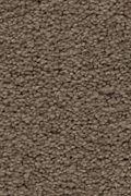 Karastan Craftsman Charm - Villa Carpet