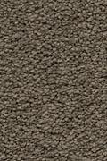 Karastan Craftsman Charm - Shadywood Carpet