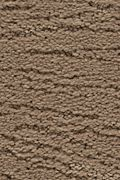 Karastan Modern Nature - Native Soil Carpet