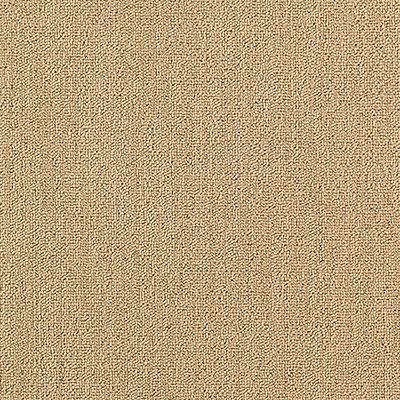 Secular Roots in Blonde Coffee - Carpet by Mohawk Flooring