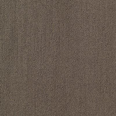 Secular Roots in Nickel - Carpet by Mohawk Flooring