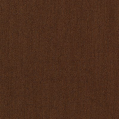 Secular Roots in Copper Penny - Carpet by Mohawk Flooring