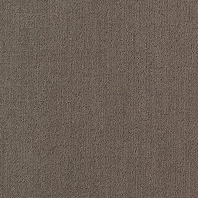 Secular Roots in Aluminum - Carpet by Mohawk Flooring