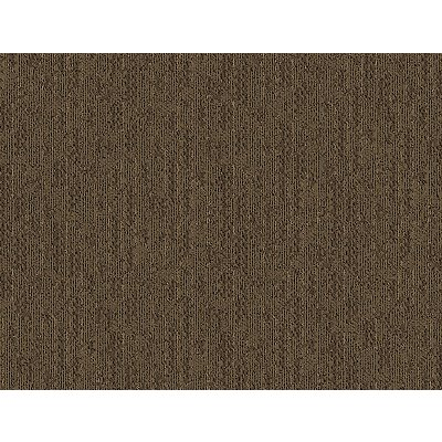 Arc Order in Congo - Carpet by Mohawk Flooring