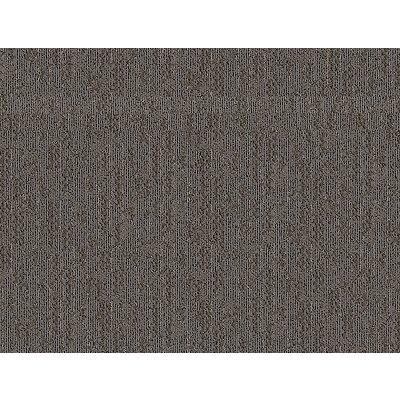 Arc Order in Castor - Carpet by Mohawk Flooring