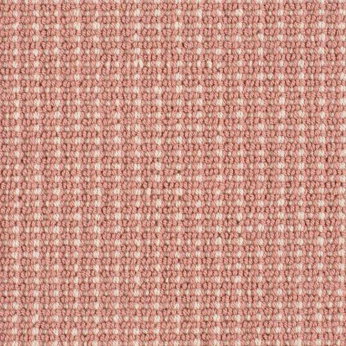 Bergeron Geranium 29315