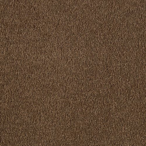 Stunning Artistry Rich Soil 6876