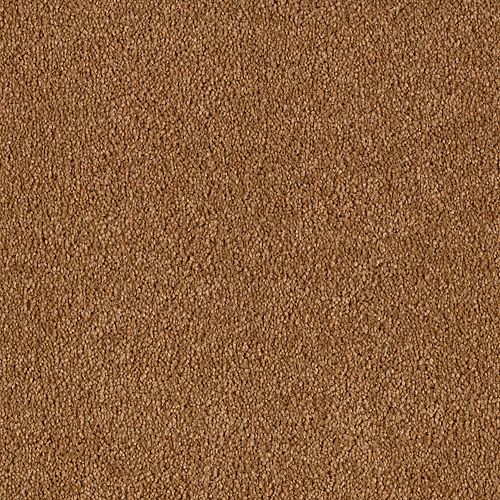Maison Golden Brown 9881