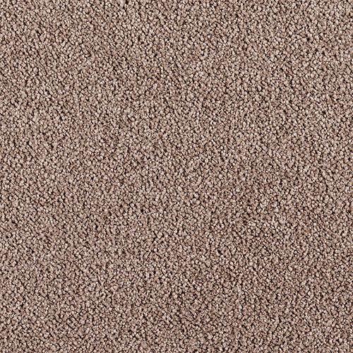 Indescribable Crisp Texture 9868