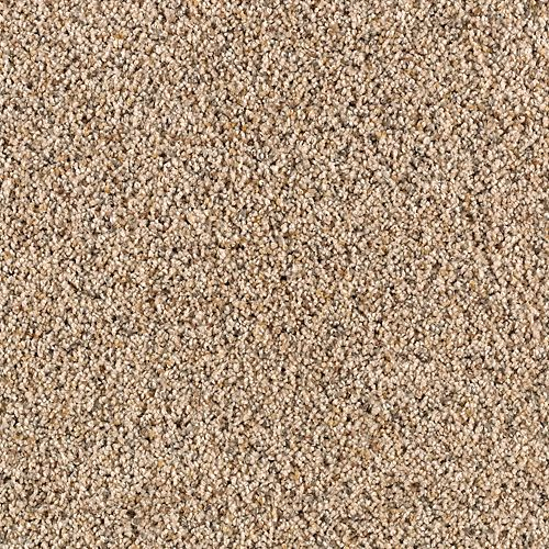 Unprecedented Coastal Beige 9837
