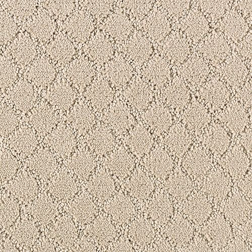 Timeless Captivation Sand Dollar 3718