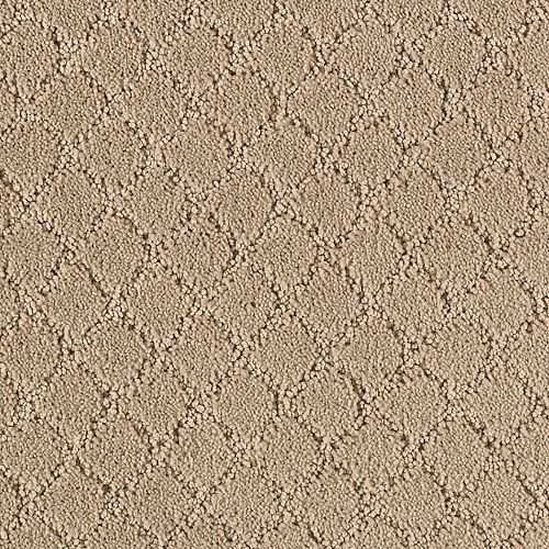 Timeless Captivation Birch Bark 3728