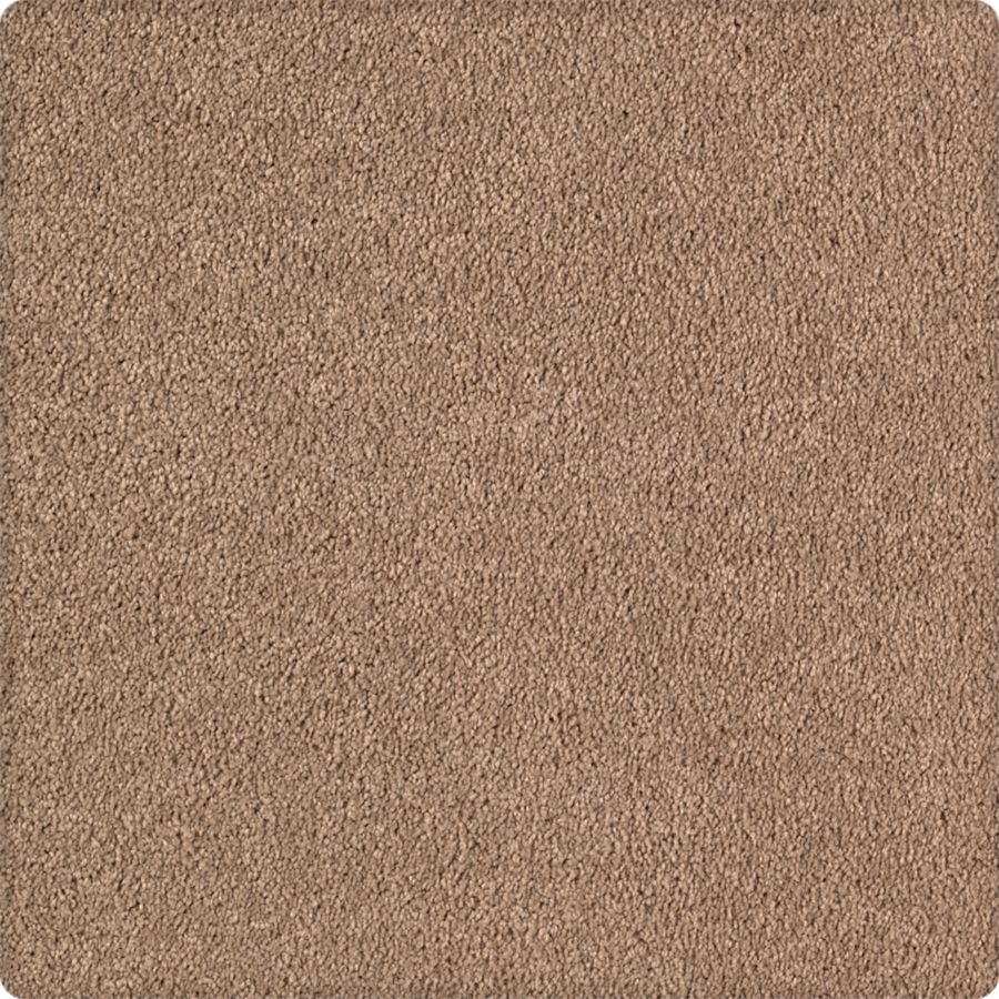 Tempting Taupe
