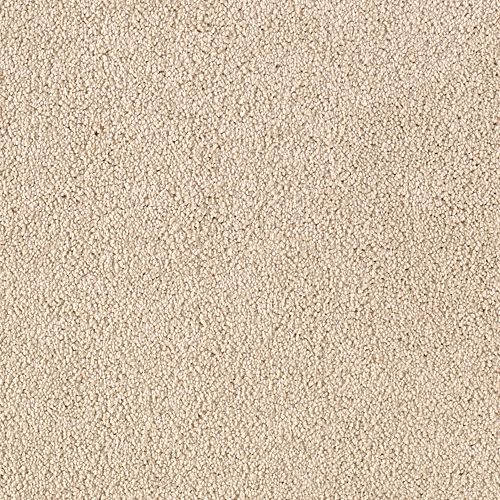 Somerset Cove Coastal Beige 9719