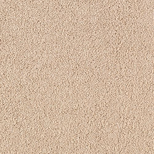 Somerset Cove Almond Wash 9723