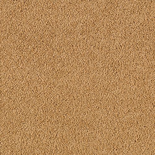 Somerset Cove Rustic Brass 9861