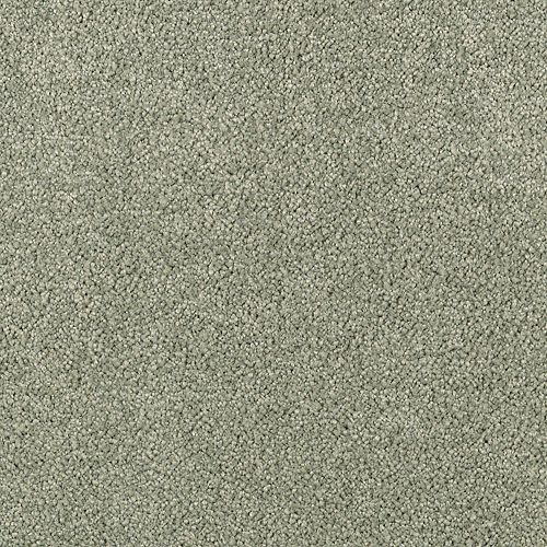 Elegantly Soft Deep Moss 9646