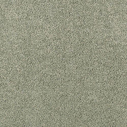 Elegantly Soft Deep Moss 9646