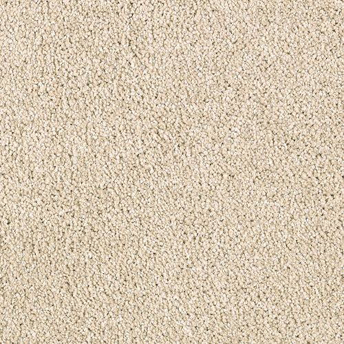 Modern Vision Toasted Almond 9728