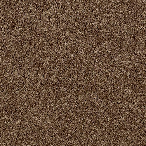 Enhanced Beauty Canvas Rust 9898