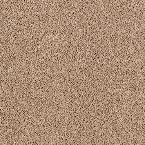 Luxurious Beauty Easily Suede 9831