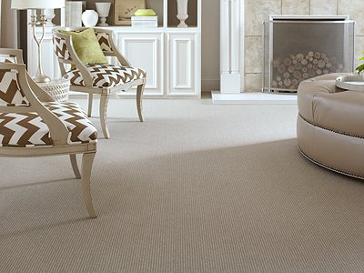 Room Scene of Worstead Weave - Carpet by Mohawk Flooring