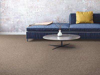Room Scene of Gentle Embrace - Carpet by Mohawk Flooring
