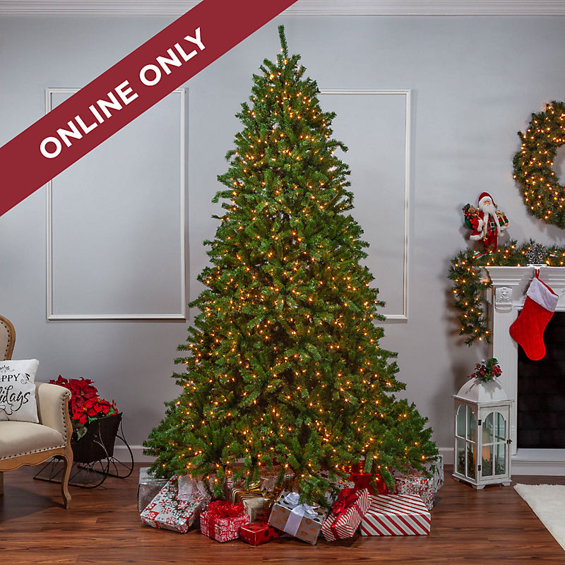 Online Only Christmas Trees Shop Now