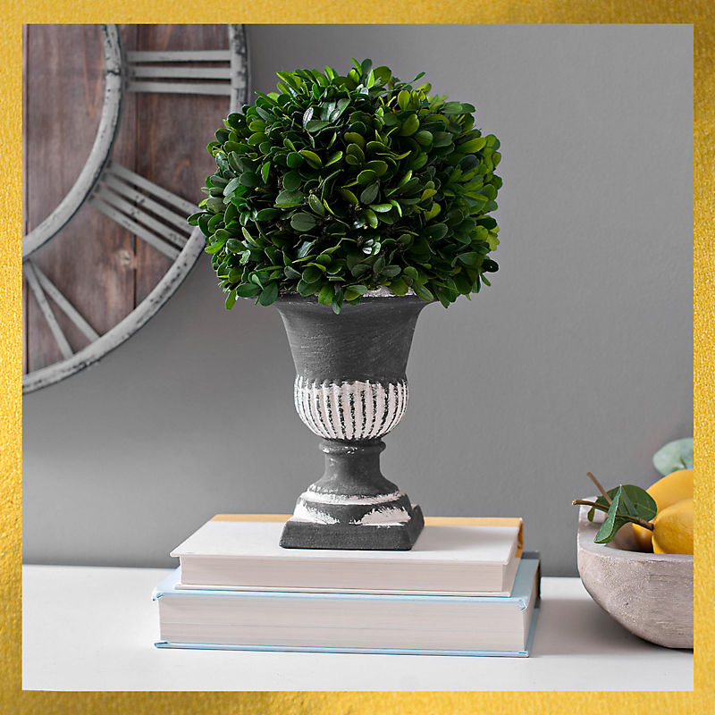 Boxwood Florals Up to 40% Off