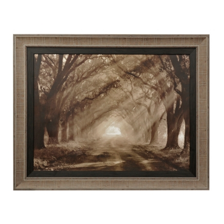 Sepia Evergreen Plantation Framed Art Print | Kirklands